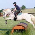 Hampton Hill Lessons 2012